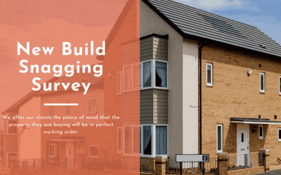 New Build Snagging Survey